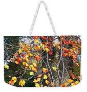 Beauty Of Fall Weekender Tote Bag