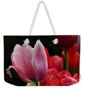 Beauty Of Spring Tulips 1 Weekender Tote Bag
