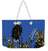 Beauty Of The Bald Eagle Weekender Tote Bag