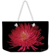 Beauty Weekender Tote Bag