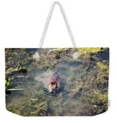 Beaver Spotted The Great Beaver Escape 01 Weekender Tote Bag