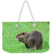 Beaver With Whiskers Weekender Tote Bag