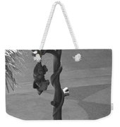 Beavers Bats And Squirrels Weekender Tote Bag