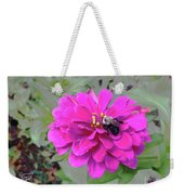 Bee Feeding From Pink Zinnia Weekender Tote Bag