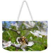 Bee On Flower On Tree Branch Weekender Tote Bag