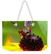 Bee On Lazy Susan 3 Weekender Tote Bag