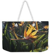 Bee Resting On The Petals Of A Bird Of Paradise  Weekender Tote Bag