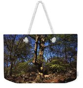 Beech Trees Coming Into Leaf  In Spring Padley Wood Padley Gorge Grindleford Derbyshire England Weekender Tote Bag
