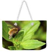 Beefly Weekender Tote Bag