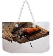 Beetle Pondering Weekender Tote Bag