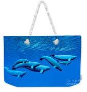 Beluga Whale Pod Weekender Tote Bag