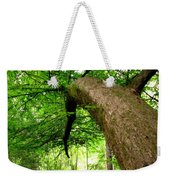 Bending Toward The Light Weekender Tote Bag