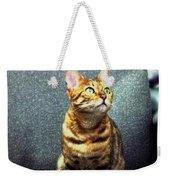 Bengal Cat Oil Pastel  Weekender Tote Bag