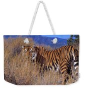 Bengal Tiger Endangered Species Wildlife Rescue Weekender Tote Bag