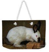 Benny Bunny Weekender Tote Bag