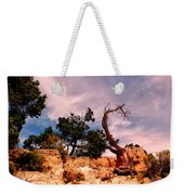 Bent The Grand Canyon Weekender Tote Bag