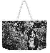 Bernese Mountain Dog Black And White Weekender Tote Bag