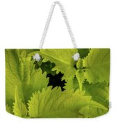 Between The Leaves Weekender Tote Bag