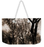 Beyond Twilight Weekender Tote Bag