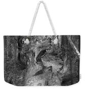Big Basin 2 Weekender Tote Bag