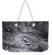 Big Basin Redwoods Sp 1 Weekender Tote Bag