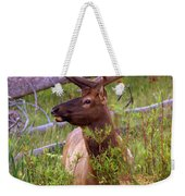 Big Bull Weekender Tote Bag