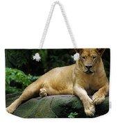 Big Cats 114 Weekender Tote Bag