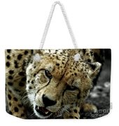 Big Cats 50 Weekender Tote Bag