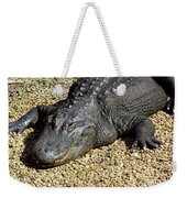 Big Gator Weekender Tote Bag