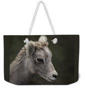 Big Horn Lamb Weekender Tote Bag