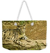 Big Kitty Cat Weekender Tote Bag