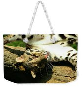 Big Kitty Fun Weekender Tote Bag