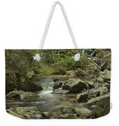 Big Pup Falls 2 Weekender Tote Bag