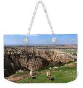 Bighorn Sheeps At Sage Creek Weekender Tote Bag
