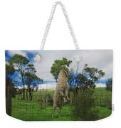 Billy Goat At The Lookout Post Weekender Tote Bag