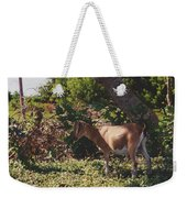 Billy Goat Weekender Tote Bag