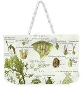 Birch, Hazel, Oak, And Willow Weekender Tote Bag