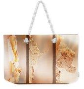 Birch Peel Tryptich Weekender Tote Bag
