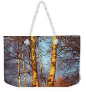 Birch Tree In Golden Hour Weekender Tote Bag