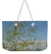 Birch Tree Over Lake Weekender Tote Bag