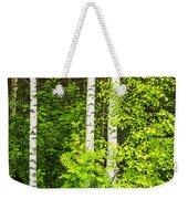 Birch Tree Panorama Weekender Tote Bag