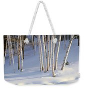 Birch Trees In The Snow, South Weekender Tote Bag