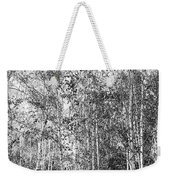 Birch Trees1 Weekender Tote Bag
