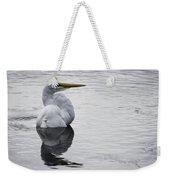 Bird Bath 4619 Weekender Tote Bag