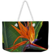 Bird Of Paradise Digital Art Weekender Tote Bag