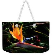 Bird Of Paradise Flower Weekender Tote Bag by Brian Harig