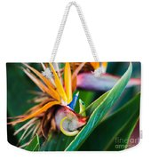 Bird Of Paradise Gecko Weekender Tote Bag