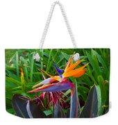 Bird Of Paradise Kalon Weekender Tote Bag