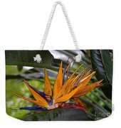 Bird Of Paradise Work Number Three Weekender Tote Bag