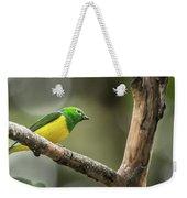 Bird Of Peru Weekender Tote Bag